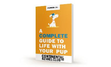 CKC-Puppies-101---Complete-Guide--Mockup.jpg