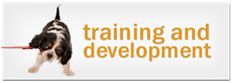 training-development